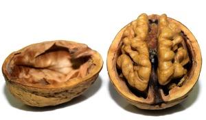 walnut-3072681_960_720
